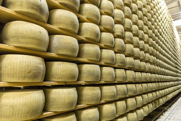 Сыроварня пармиджано с выдерживающим сыром