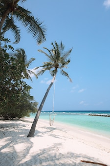 Красивый тропический пляж мальдивских островов