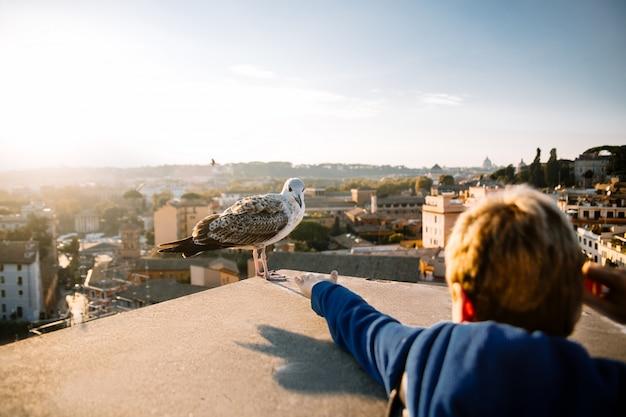 小さな男の子はカモメに手を伸ばします。ローマ。イタリア