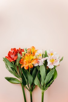 アルストロメリアの美しさの花
