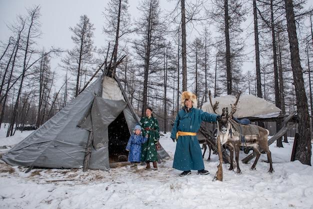 モンゴルのタイガでトナカイの伝統的なツァアタン族のモンゴルのトナカイ