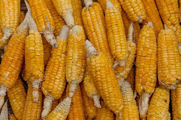 Желтая сухая кукуруза в качестве фона