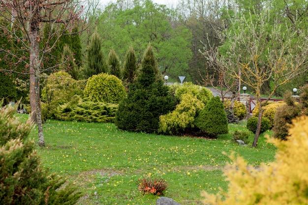 庭、幾何学的形状のブッシュと低木の風景が緑に咲く色とりどりの花で飾る