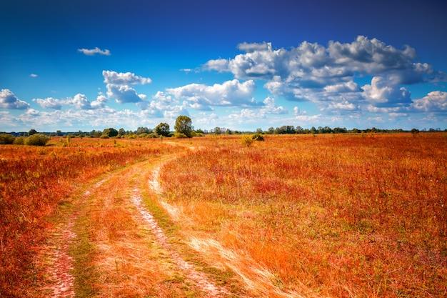 空の田舎道。