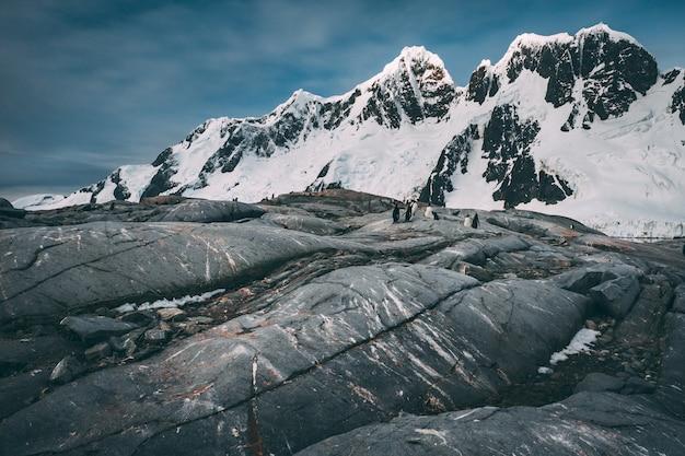 Древний прохладный поток лавы. антарктические горы.