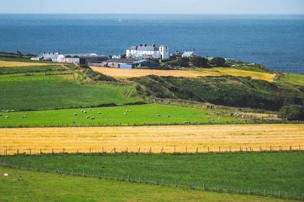 畑に囲まれた農場。北アイルランド。