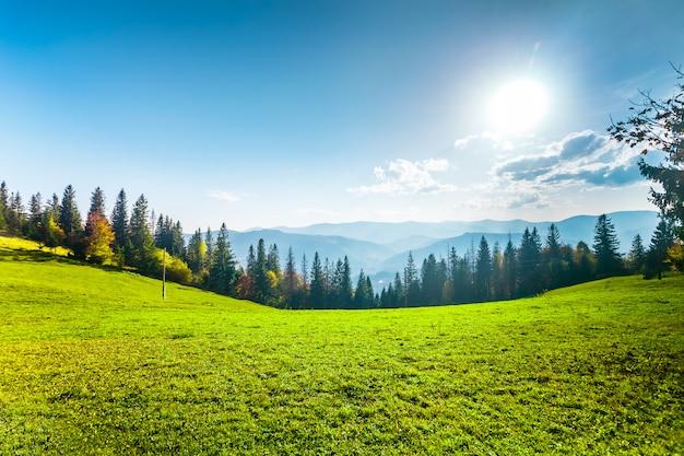 素晴らしい日当たりの良い丘。