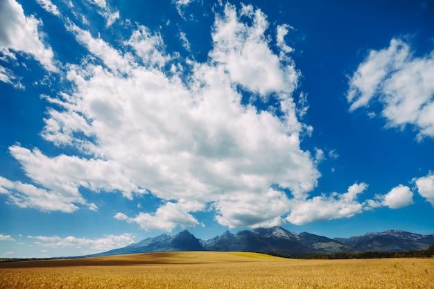 澄んだ青い空に白い明るい雲。タトラ。