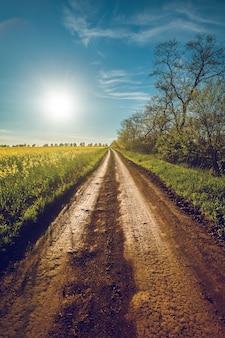 Солнце и сельская дорога в бакоте