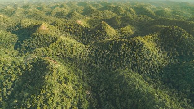 緑に覆われた丘。空中ドローンショット。インドネシア。