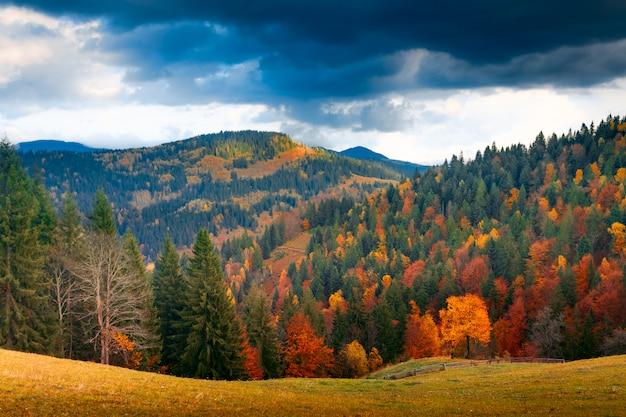 カラフルな秋の風景