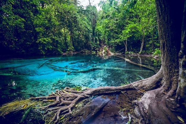 Изумрудно-синий бассейн