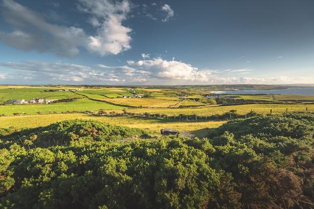 Ирландский сельский пейзаж