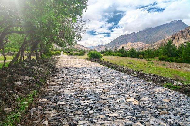 山の谷の石の道