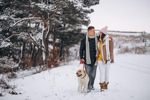 彼らの犬と一緒にウィンターパークを歩く家族