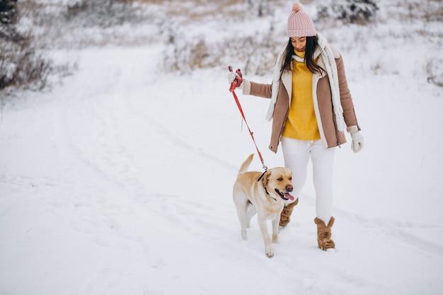 冬の公園で彼女の犬を連れて歩いて若い女性