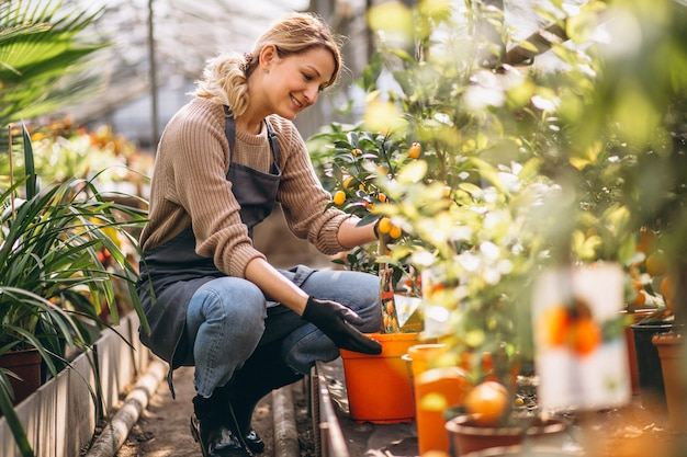 温室の植物の世話をしている女性