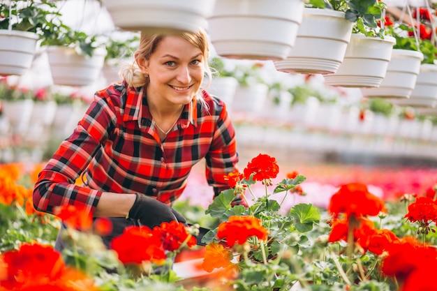 温室の花の世話をしている女性のガードナー