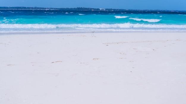 Голубая вода волны на берегу океана