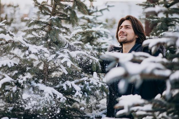 クリスマスツリーを選択するハンサムな男