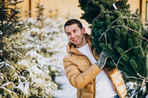 Красивый мужчина, выбирая елку в теплице