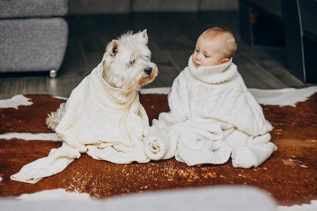自宅で暖かいセーターを着ている彼のかわいいペットの犬と小さな男の子