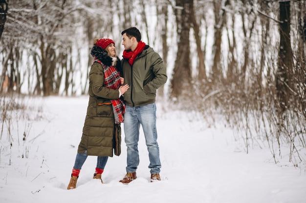 冬の公園で歩く愛のカップル