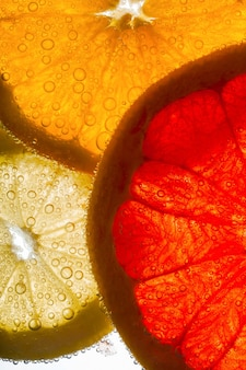 オレンジ、レモン、グレープフルーツのスライスが空気の入った水の中に横たわっている