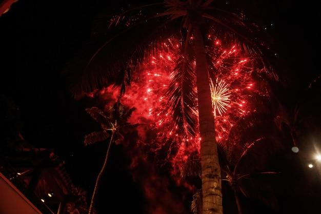 赤い花火がハワイのヤシの上で吹き飛ぶ
