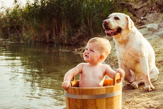 «малыш мальчика и собака, смотрящие снаружи»