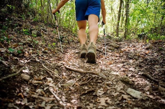 アクティブなアスリートは、ノルディックウォーキング用の特別な機器を使用して森を登ります