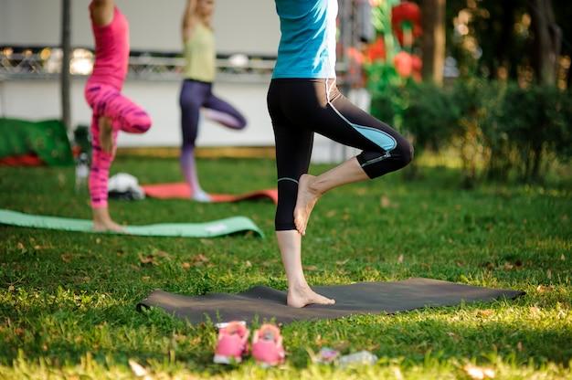 Группа в составе женщины делая тренировки йоги на траве в парке. ноги сняты