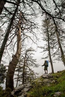森の岩の上に立っている女性ハイカー