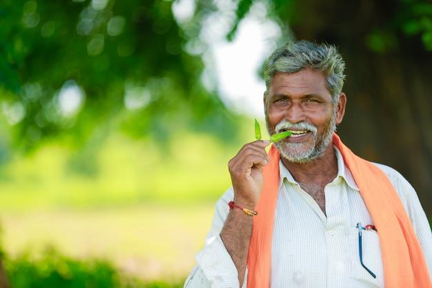 フィールドで働く若いインドの農夫