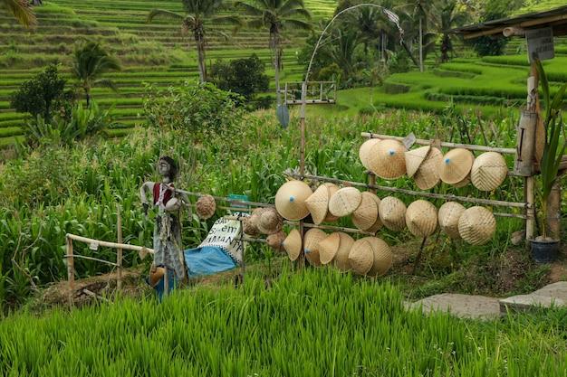壮観な景色で訪れるのに人気の場所、観光客のための麦わら帽子のあるお土産屋