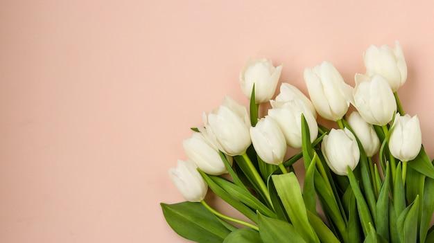 明るいパステル調の背景、コピースペース、水平方向に新鮮な春の白いチューリップの花束