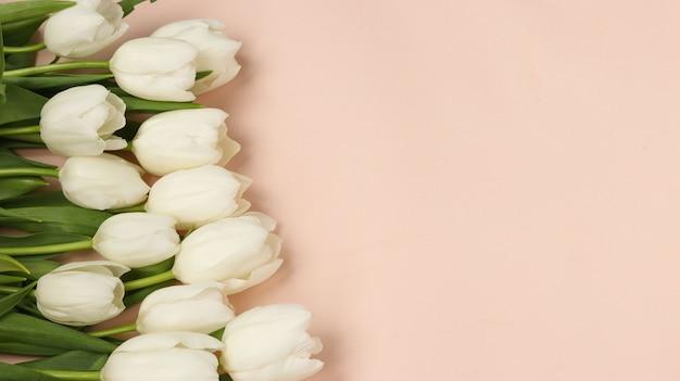 明るいパステル調の背景、コピースペースにある新鮮な春の白いチューリップの花束