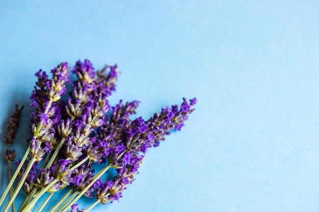 新鮮なラベンダーの花のコンセプト