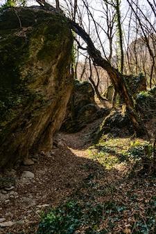 ジョージア州のビルトビジ渓谷