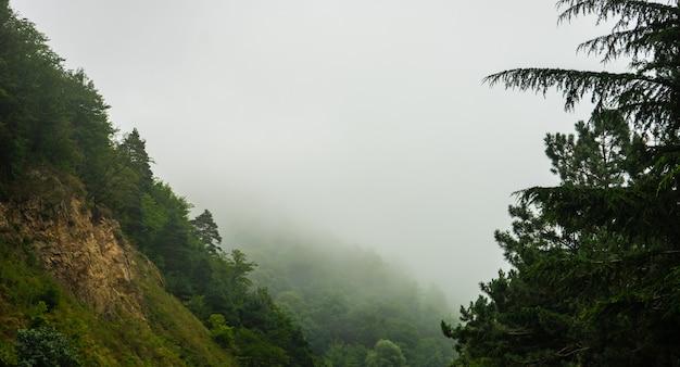 素晴らしいコーカサス山脈