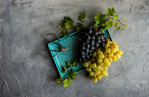 セラミックプレートのブドウ