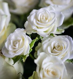 花束の白いバラ