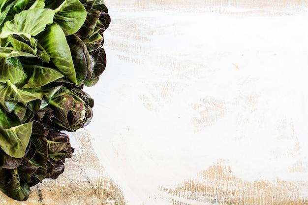 白い背景の夏サラダの野菜