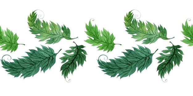 様式化された緑の葉と水彩の境界線