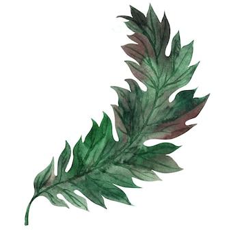 様式化された緑の葉と水彩の背景