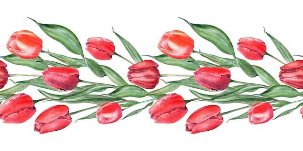 エレガントな赤いチューリップと水彩のシームレスな境界線。つぼみ、花、葉