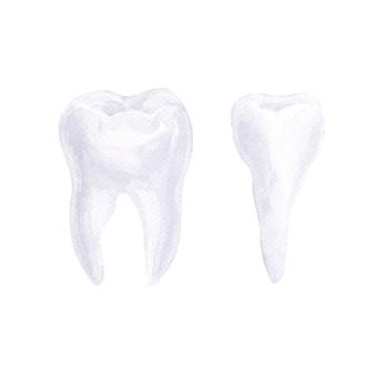 歯科をテーマにした水彩画の組成物。歯科医療の要素