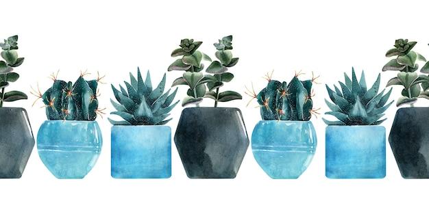 色とりどりの鍋にサボテンの種類と水彩のシームレスな境界線