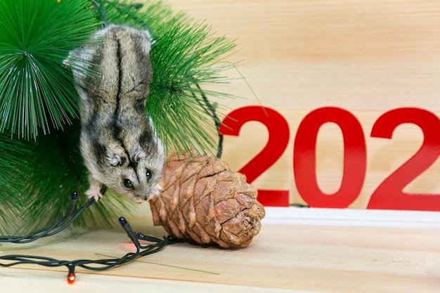 Серая мышь возле новогодних украшений.