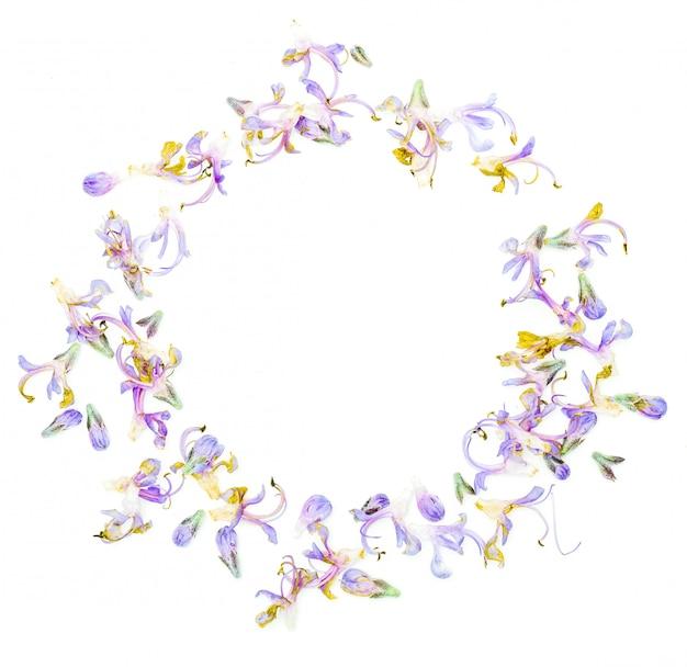 新鮮なローズマリーの繊細な紫色の花の円形フレーム。白い背景に分離します。